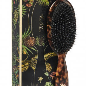 Fan Palm - Medium Turtle - Hairbrush